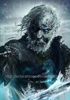Ser Barristan Selmy by ertacaltinoz