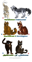 Hypokits- commission by DancingfoxesLF