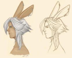 Viera side profiles by vin-cent-destati