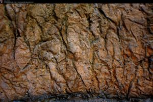 SS-0144 Cracked Stone Wall by Stocking-Stuffer