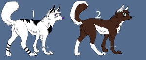 Cheap Wolf Adopts by BlackWolf1112-ADOPTS