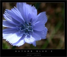 Autumn Blue 2 by wulfster
