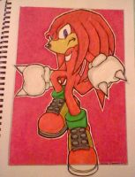 Knuckles The Echidna by Sky-The-Echidna