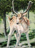Drawn to Help 8.10: Deer Hart by theperian
