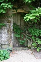 Athelhampton House 24 GothicBohemianStock by OghamMoon