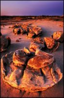 Egg Factory II, Bisti Badlands by kimjew