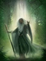 Gandalf the White. by Suzanne-Helmigh