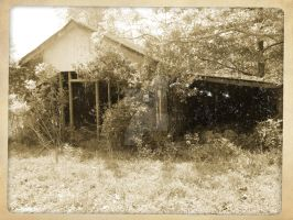 what was left standing by x--photographygirl