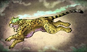 Leopard Spirit by IzaPug