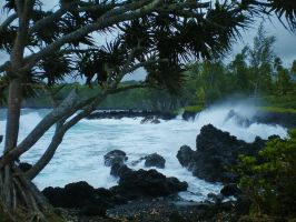 Windy Maui Waves by Marilyn958