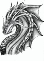 Dragon Portrait 2 by Tiramora