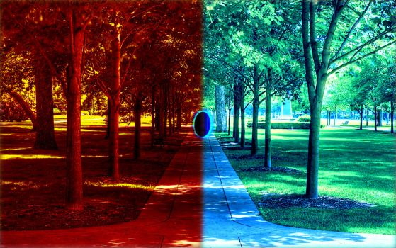 Portal in the Park by bern001