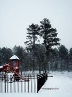 Winter Play by PhotographiCreed