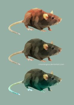 Low Poly Rats by CharmingIce