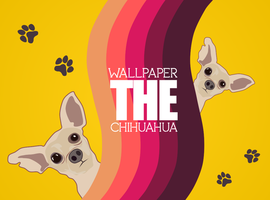 The Chihuahua Wallpaper by rasulh