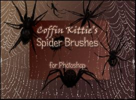 Spider Brushes for Photoshop by coffinkittie