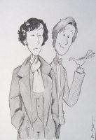 Sherlock and the Doctor by BevisMusson