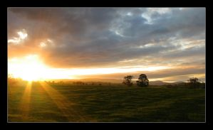 Rothbury Glory by xyster