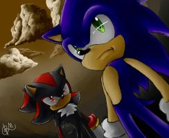 Sonic and Shadow by A-M-y-Rose