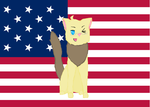 America Cat by Demon-of-Insanity