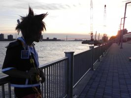 Sora and the Sunset by ADRENOX
