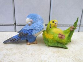 Summit Collection budgies 3 by Sorath-Rising
