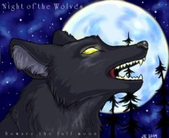Night of the Wolves by ShadowedFate