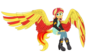 Pheonix wings by catlover1672