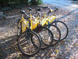 Starting a Bike-share Program by DJ-Erock