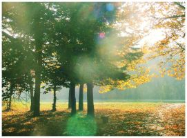 Morning air by Sandrita-87