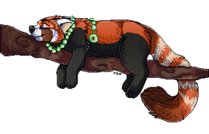 Pizazz red panda commisison by nightspiritwing