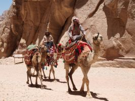 Camel riding in Petra by BigA-nt