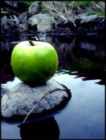 the apple by arkivbild