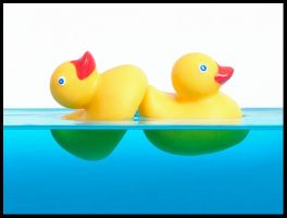 Ducky Style by lorrainemd