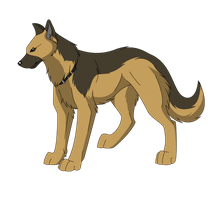 German Shepherd by Inumaru101