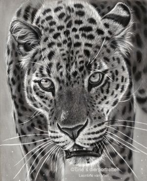 'I see you', pastel drawing by Tinesdierportretten