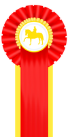 2nd-3 Day Event-IDS-Dressage by patchesofheaven74