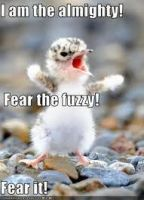 Fear the Fuzzy by MikalaLD