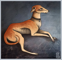 Hound by cinface