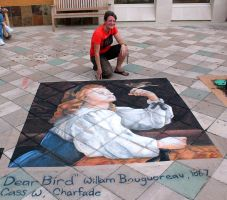 Dear Bird Chalk Art by charfade