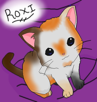 Roxi The Calico by angelofcryinghearts