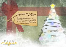Plan Nagua Christmas email by spen
