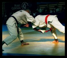 judo. by zupan
