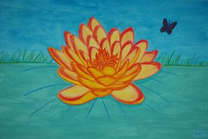 Lotus Flower by 12jack12