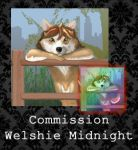 COMMISSION - Welshie Midnight by PointyHat
