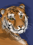 an extremely dodgy tiger haha by JustSomeRandomKidLol