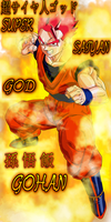 Super Saiyan God Gohan by EliteSaiyanWarrior