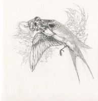Thumbelina and the Swallow by Himmapaan