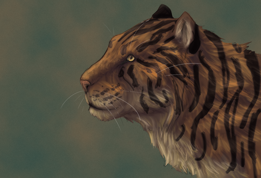 Tiger by CirrusTheCloud