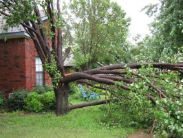 Storm Damage 2 by toenolla